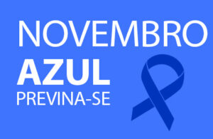 post-nov-azul